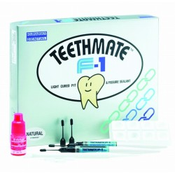 Teeth Mate F-1 Value Kit