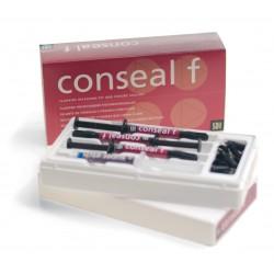 Conseal F  Coffret Seringues 3 Seringues de 1g et 1 Seringue de 1mL de gel Super Etch BV et 20 embouts